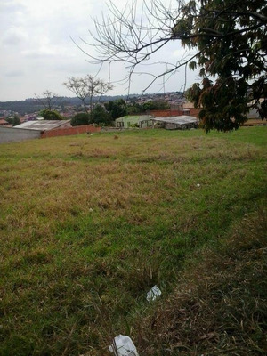 Terreno Residencial À Venda, Cidade Satélite Íris, Campinas. - Te2098