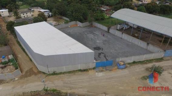 Galpão Para Locação Em Cariacica, Novo Horizonte - 30036