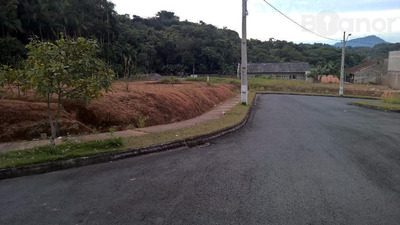 Terreno À Venda, 312 M² Por R$ 180.000 - Fortaleza - Blumenau/sc - Te0148