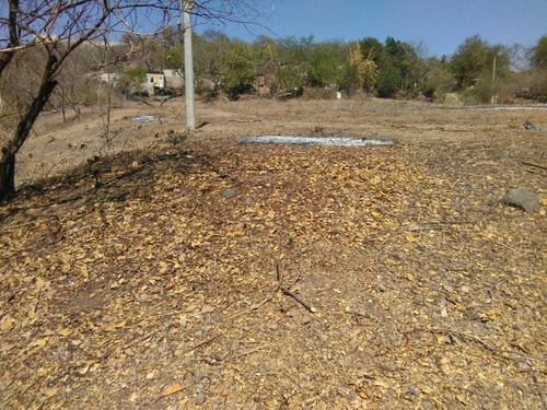 Terreno Campestre En Miahuatlán ( El Cuiji ) / Amacuzac - Ifo-11-tca