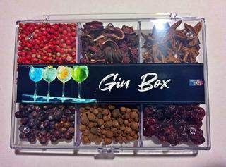 Kit Com 6 Especiarias Gin Tônica