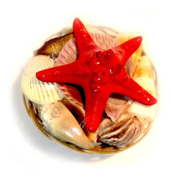 Estrella De Mar Roja Y Caracoles Surtidos En Canasta De 9 Cm