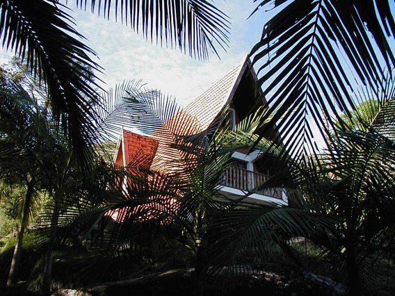 Chacara Morro Do Pinheiro