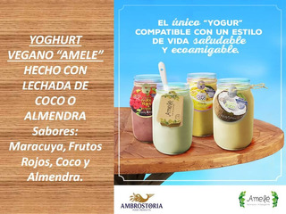 Yoghurt Vegano Amele 4 Variedades Exquisitas Hielera 29 Pzas