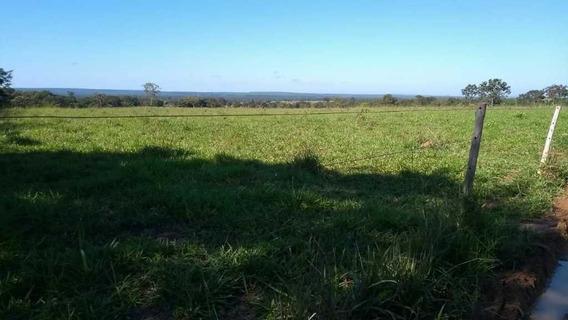 Fazenda Com 292 Hectares De Agricultura Curvelo Mg - 7576