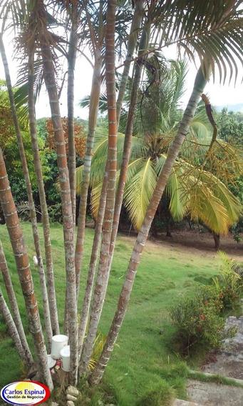 Finca En Venta En Bávaro, Republica Dominicana