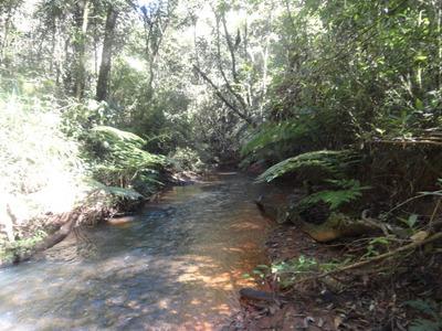 Propriedade 30.000 M², Córrego Com Muita Água Nos Fundos. - 411