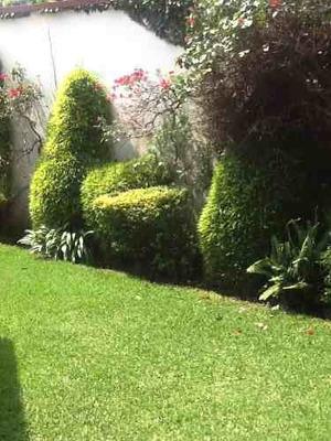 Casa 3 Recamaras,jardín En Exclusivo,arbolado Y Seguro Condo