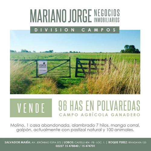 Imagen 1 de 3 de Campo De 96 Has En Polvareda - Saladillo