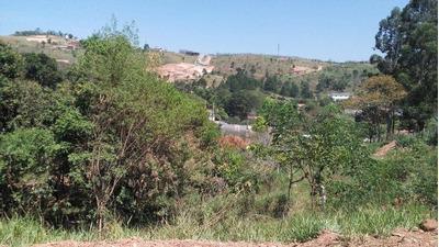 Terreno Residencial À Venda, Mato Dentro, Mairiporã. - Te0120
