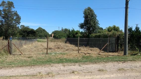 Terrenos Y Lotes En Mar Del Plata En Mercado Libre Argentina