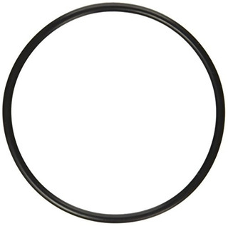 Pentair 272541 Oring Replacement Poolspa Filter And Valve