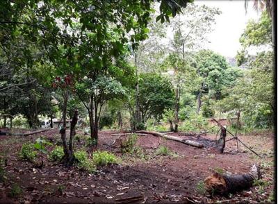 Terreno Em Cassange, Salvador/ba De 0m² À Venda Por R$ 195.000,00 - Te193676