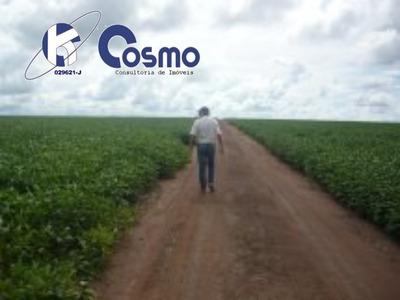 Fazenda, A Venda, Em Santiago Do Norte - Mt **oportunidade Única** - Fa00067 - 33517874