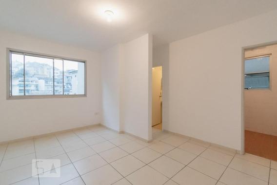 Apartamento Para Aluguel - Santa Teresa, 1 Quarto, 65 - 893007343