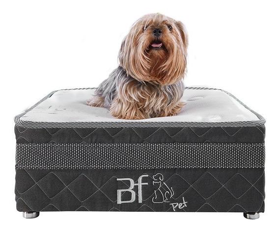 Caminha Pet Box+ Lençol Impermeável Cachorros Gatos 60x60cm