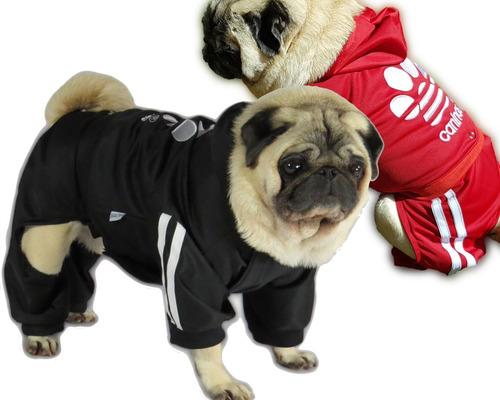 Imagem 1 de 10 de Roupa De Cachorro/ Gato Inverno Frio Moleton Caninas