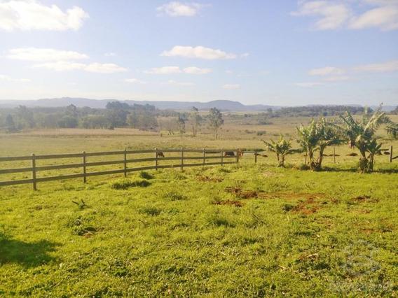 Rural - Passo Das Tropas, Santa Maria / Rio Grande Do Sul - 1880
