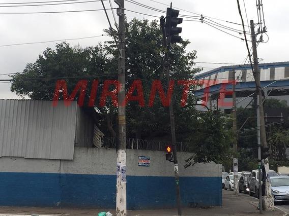 Terreno Em Lauzane Paulista - São Paulo, Sp - 175234