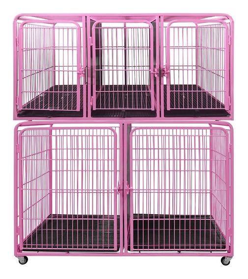 Canil Gatil Gaiola Modular 5 Lugares P/ Petshop Veterinária