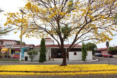 Alquilo Casa Grande En Romeral Con Teatro Y Piscina-cr