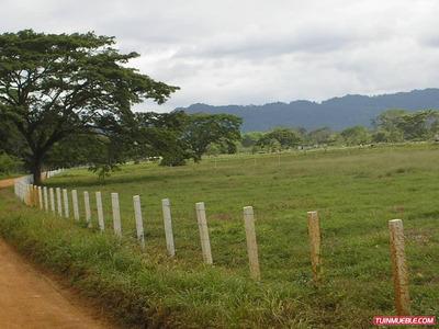 Haciendas - Fincas En Venta 04243152054