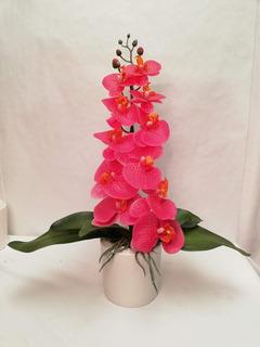 Arreglo Floral Orquidea Natural Hogar Muebles Y Jardín En