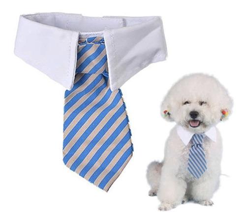Corbata Perro Gato Rojo Azul Rayas Elegante