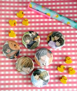 Set De 6 Pins Prendedores De Anime Junjo Romantica Yaoi