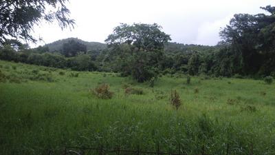 Terreno Con 986,642.65 Mts2 Por Carretera Pedregal La Cuaba