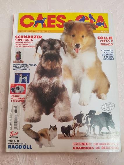 Revista Cães & Cia - Março De 2002