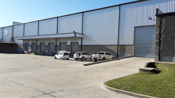 Centro Logistico De 5000 M² Cubiertos