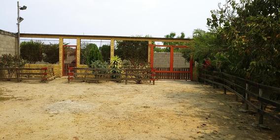 Casa Granja En Venta En Cabudare Rhr 19-10210