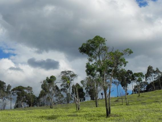 (k.a) Terrenos Com Entrada Parcelas 500m² - Com Lago - Sp