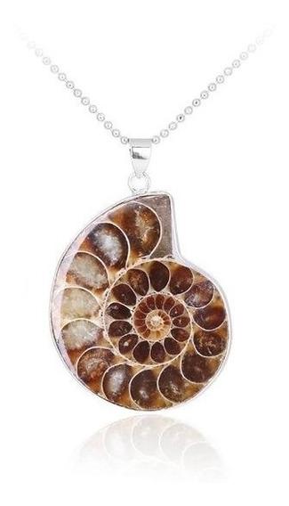 Collar Piedra Ammonite Petrificado Caracol Artesanía Joya