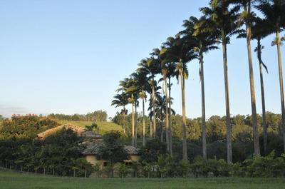 Terreno Em Condomínio Village Das Palmeir, Itatiba/sp De 1000m² À Venda Por R$ 260.000,00 - Te44090
