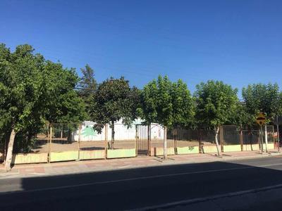 Vendo O Arriendo Terreno - María Pinto (pleno Centro Urbano)