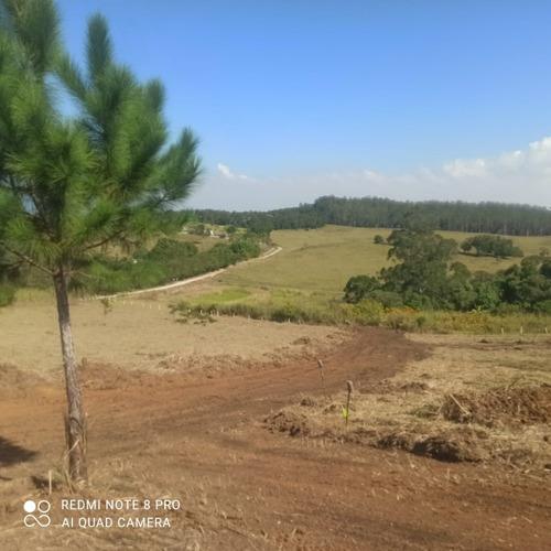 Imagem 1 de 14 de 3-  Terrenos De 600m2 Ou 1000m2 Temos Muitas Opções !