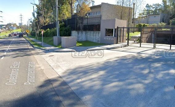 Casa Chalet En Alquiler Ubicado En San Isidro, Zona Norte