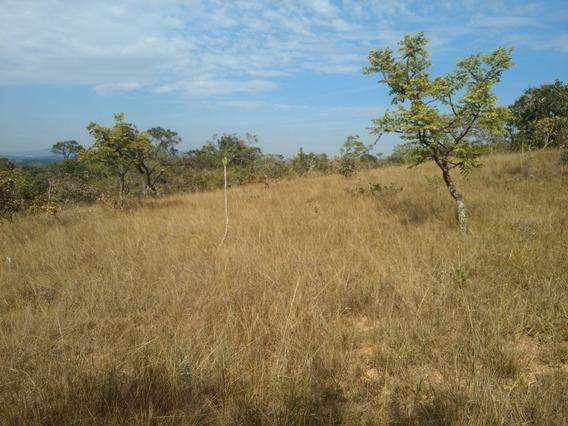 Fazenda 100 Hectares Mg Preço De Ocasião