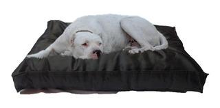 Colchón Liso Antidesgarro 1.10x70x12 Cama Perros Mascotas
