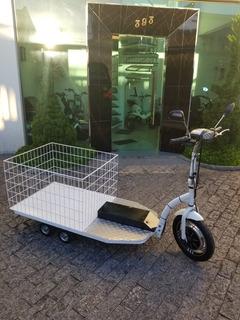 Triciclo Elétrica 500w 48v (de Carga ) C/frente E Ré
