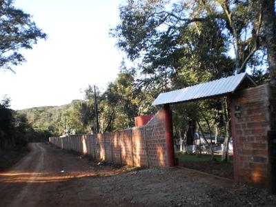 Imóvel Rural Para Venda : Ref:94251.001 - 94251.001