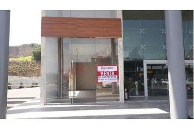 Local Comercial En Renta / Edificio Orvit / Piamonte / Queretaro
