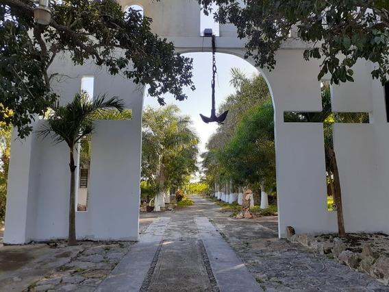 Rancho Con Cenote En Venta. 40 Hectáreas En Telchac, Yucatán