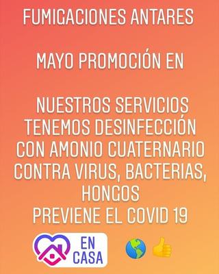 Fumigaciones Antares Servicio Contra Chiripas, Cucarachas.