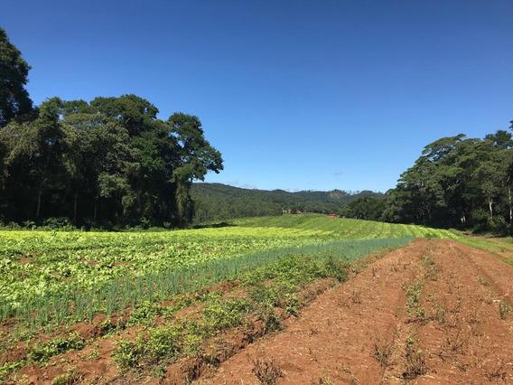 Vendo Meu Terreno Em Ibiúna 600 M2 Demarcados E Planos J