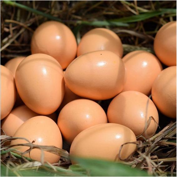 24 Ovos Artificiais Serve Para Indez
