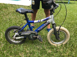Bicicleta Raleigh Mini. Rodado 12