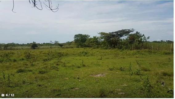 Excelente Terreno Para Proyecto Agroindustrial 6.6has